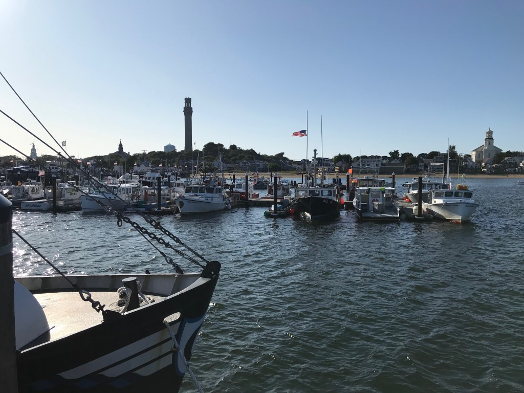 harbor (1)